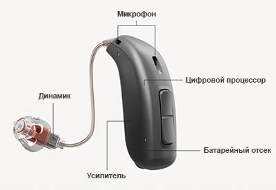 Из чего состоит слуховой аппарат